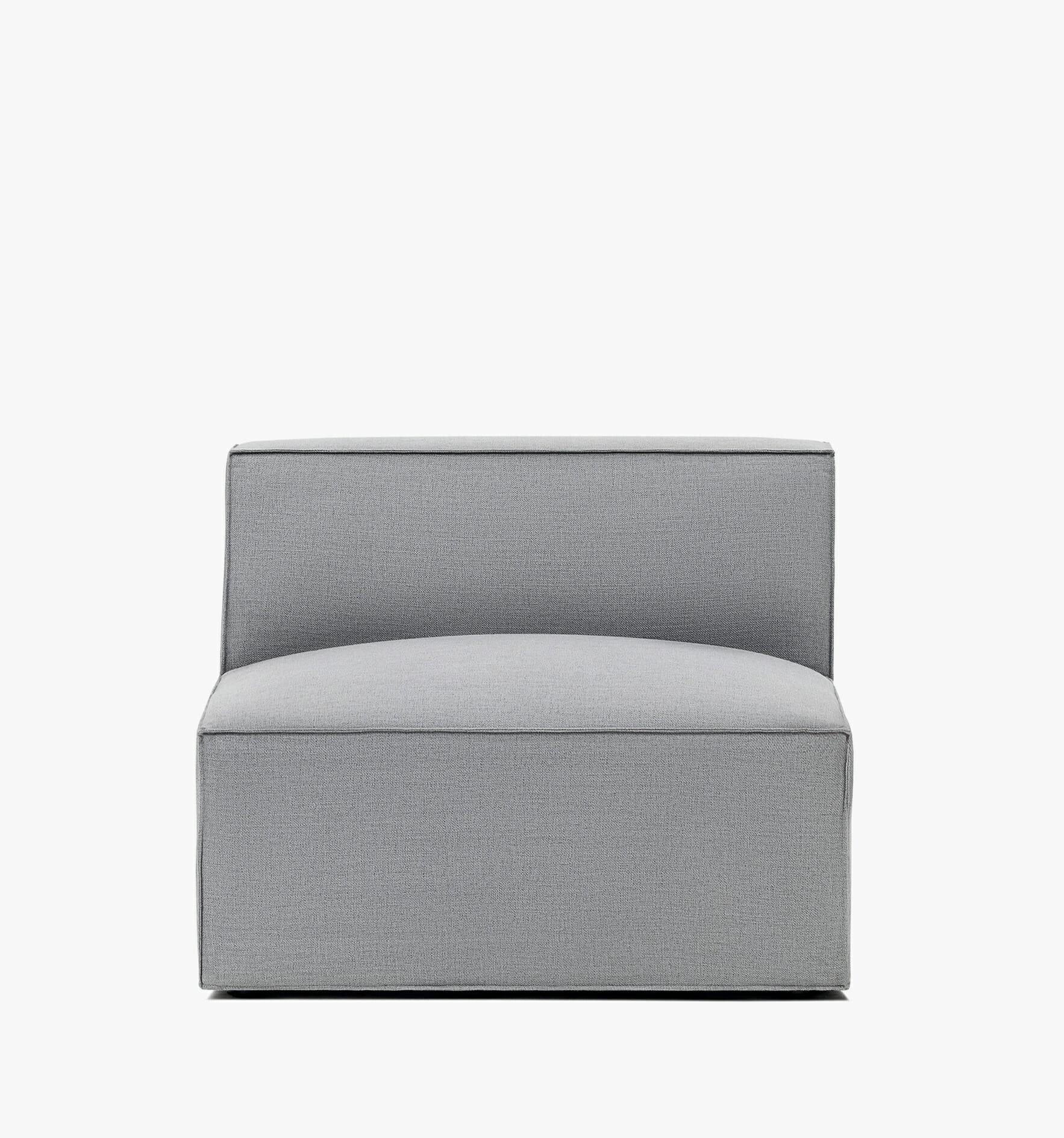 Pacific armless - grey